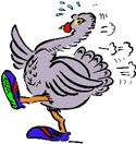 Turkey Trot Half Marathon Logo